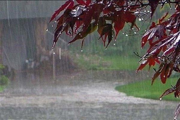 سیستم بارشی از امروز وارد استان ایلام می گردد