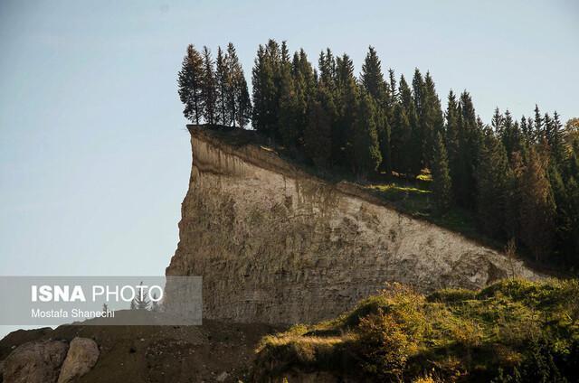 کاهش جنگل های مازندران