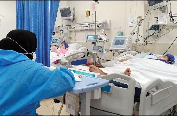سوری: احتمال رخداد پیک پنجم در کوتاه مدت بسیار کم است